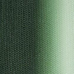 Виридоновая зеленая масло Мастер-класс, туба 46 мл.